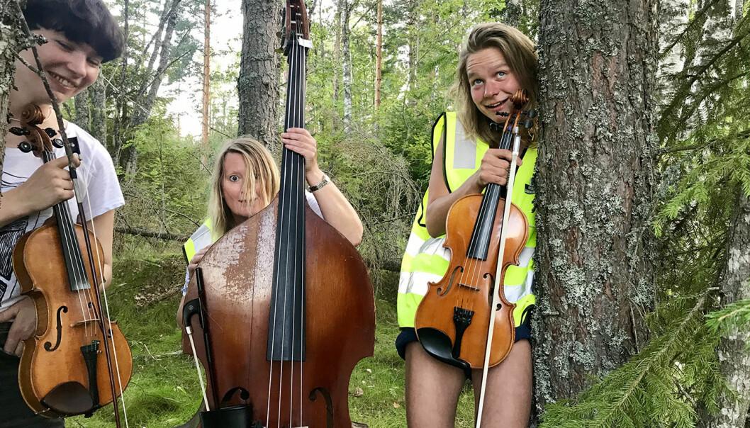Sjarkheim Spelekvinnskvartett. Foto: Mattias Cyvin Storaas.