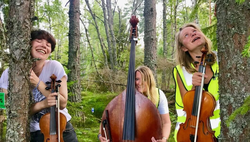 Sjarkheim Spelekvinnskvartett. Foto: Mattias Cyvin Storaas