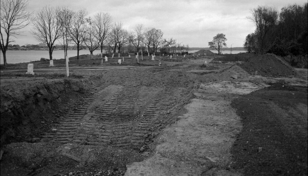 Hvert år blir mer enn tusen mennesker gravlagt på Hart Island.  Her er en planlagt massegrav fra 1993.