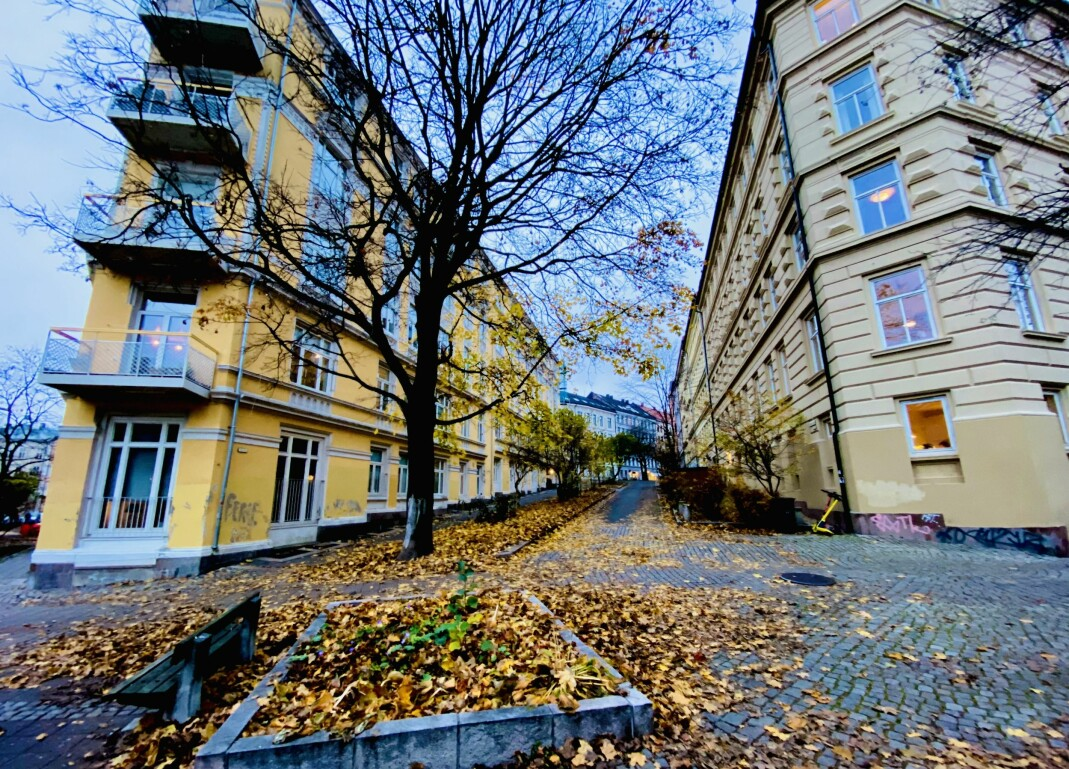 Ruth Maiers plass ligger i krysset Glückstads gate/Dovregata/Krumgata i Oslo.
