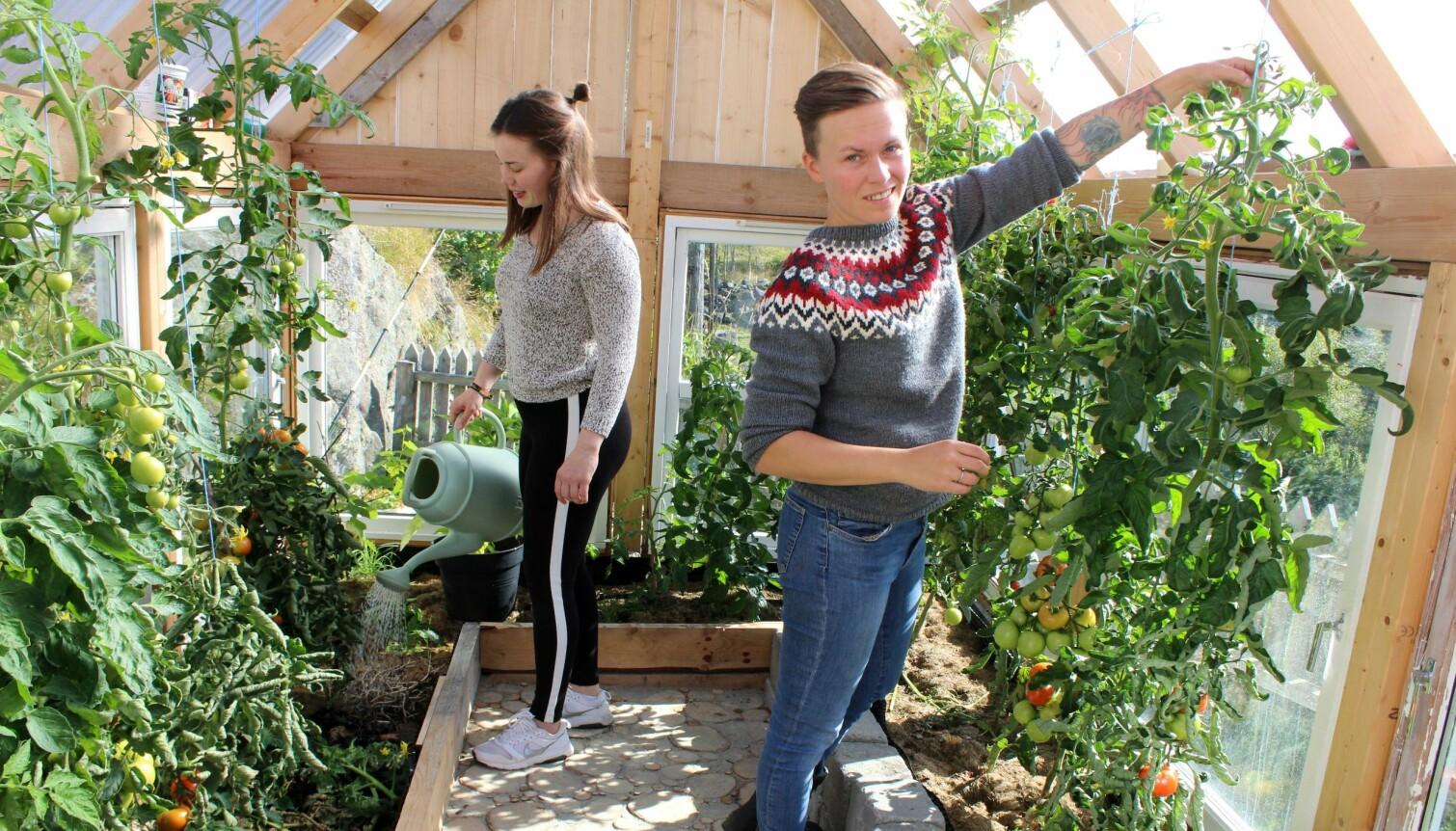 – Vi er opptatt av bærekraft og ønsker å gi noe tilbake og gjøre noe for andre. Da tenker vi at det vil være aktuelt å dyrke mer her, for eksempel bær, sier Solfrid Lerbrekk.