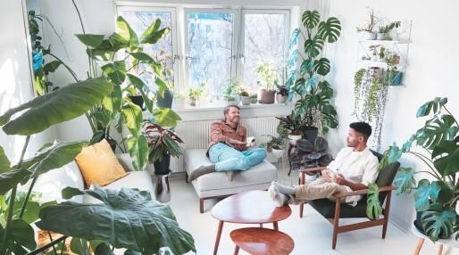 48 000 mennesker følger ekteparet Andreas og Daniels grønne samliv