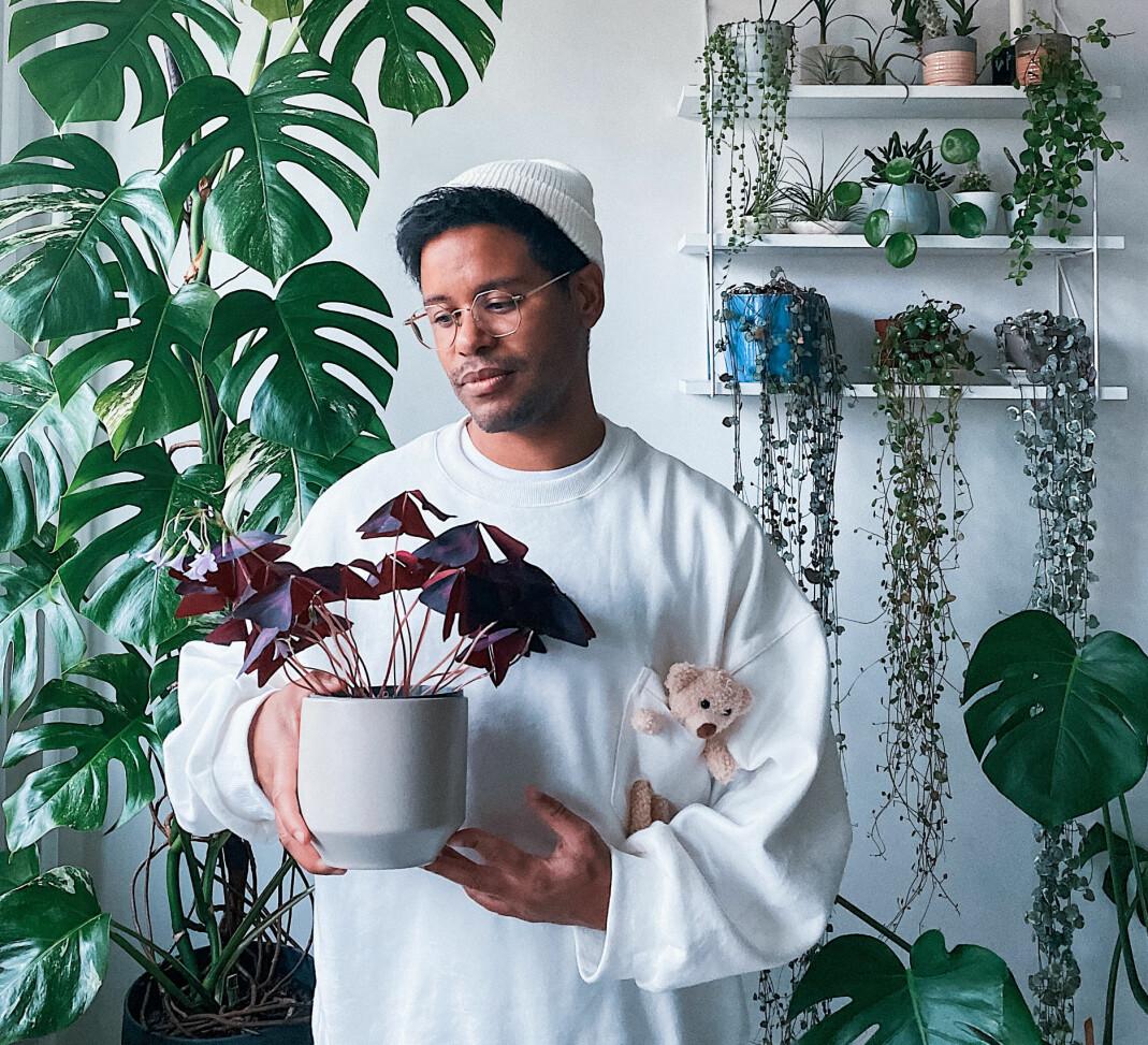 – Stiklinger er også en fantastisk måte å bli kjent med en plante på og se om den liker deg tilbake, sier Daniel til Blikk.