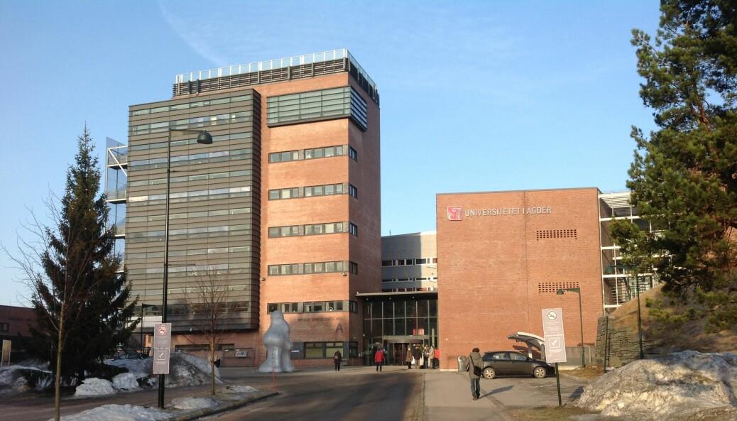 Universitetet i Agder.
